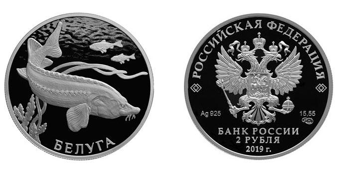 Белуга на 2 рублях России