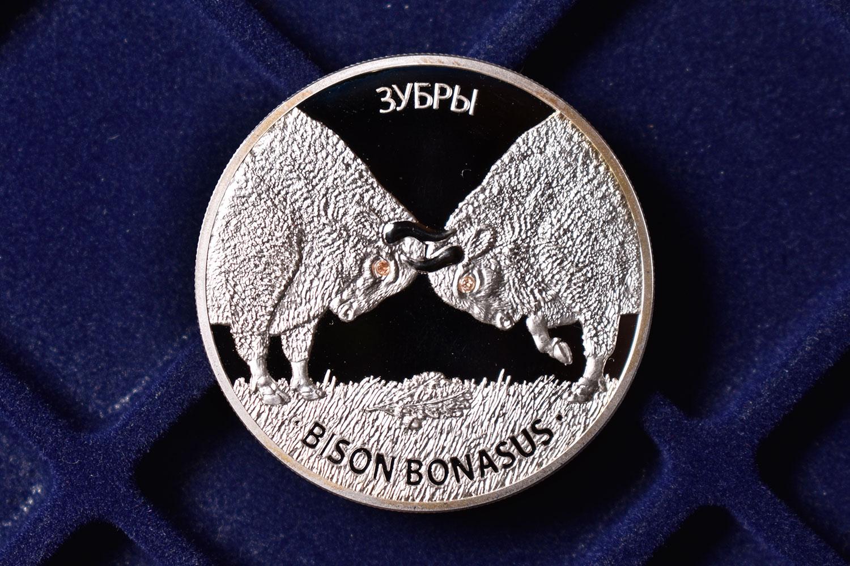 20 рублей 2012 - Беларусь (Зубры)