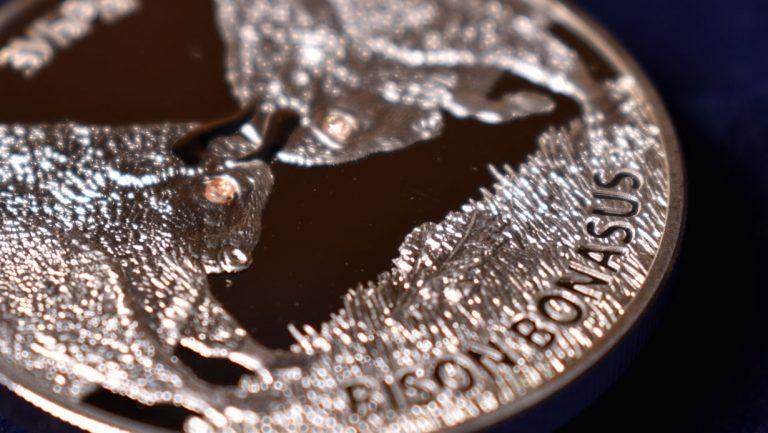 20 рублей - Зубры (серебро, 2012 год)